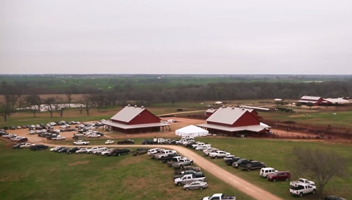 2015 Prime Cut Bull Sale Recap Video
